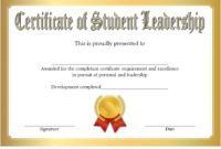 Educational Leadership Graduate Certificate Template FREE 2