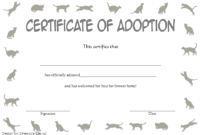 Cat Adoption Certificate Free Printable (2nd 2020 Design)