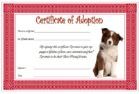 Dog Adoption Certificate Template Free (Semi-Official Design)