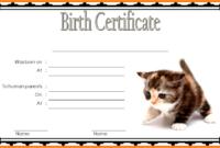 Printable Kitten Birth Certificate FREE (1st Choice)