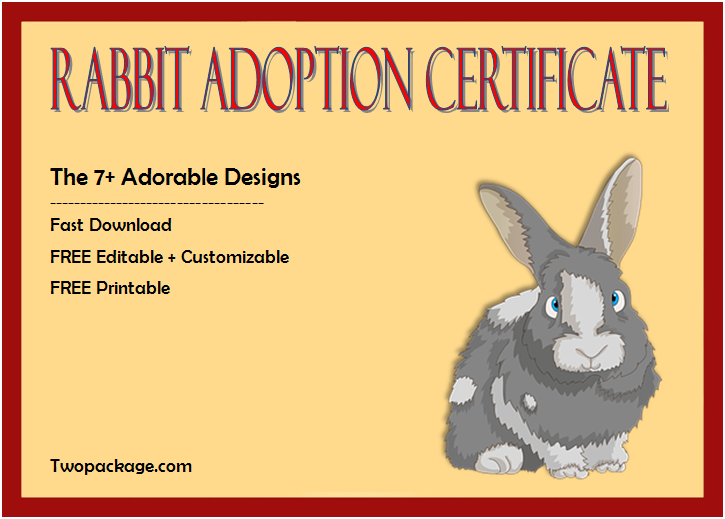 rabbit adoption certificate template, bunny adoption certificate, pet adoption certificate template free, animal adoption certificate, free pet adoption certificate template word