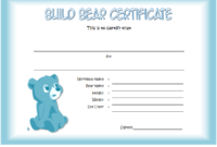 FREE Build a Bear Workshop Birth Certificate Template Printable 2