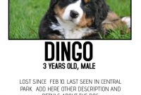 Free Printable Lost Dog Flyer Template (4th Design)