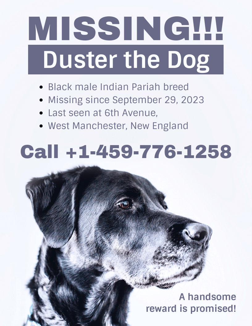 lost pet flyer template download, printable lost dog flyer template, missing dog flyer template free, lost animal poster template, lost dog poster template word, free lost cat flyer templates, lost pet flyer template free