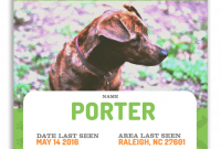 Missing Dog Flyer Template Free Design (The 2nd Best Idea)